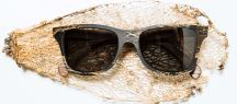 Canby Cactus Sunglasses, $295 from Schwood, Photo Cred: Schwood