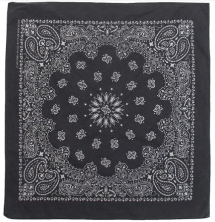 DSTLD Cotton Paisley Bandana in Black, $22, Photo Cred: DSTLD