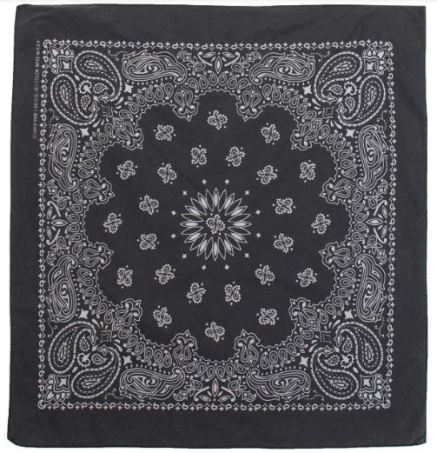DSTLD Cotton Paisley Bandana in Black, $22, Photo Cred: DSTLD