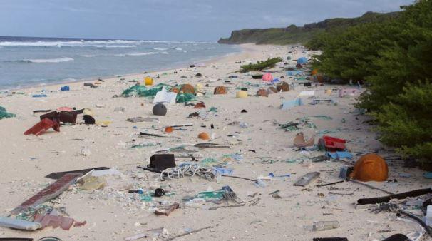 Henderson Island's East Beach, Photo Cred Jennifer Lavers